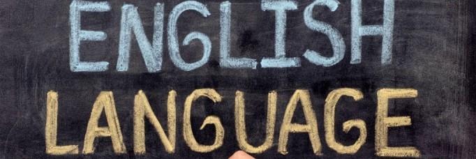 language vision